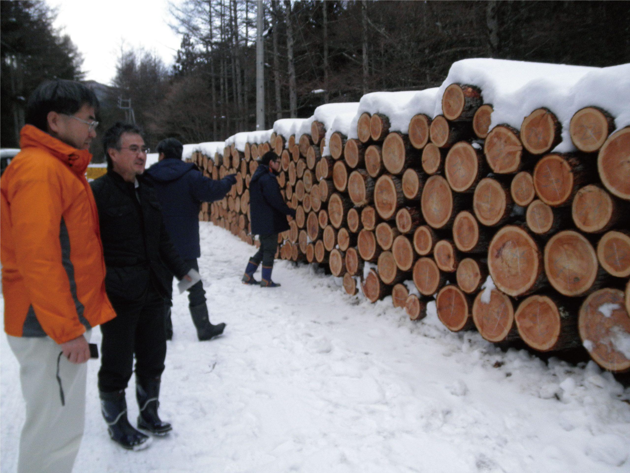 木造公共建築物等の整備に係わる設計段階からの技術支援